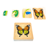 Multi-layer butterfly life cycle puzzle