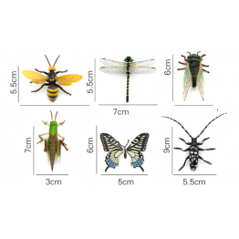 Insects set of 6
