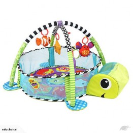 Activity Gym and Ball Pit play mat